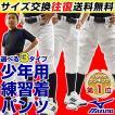 2018モデル ミズノ 選べる3タイプ 野球用練習着 ユニフォームパンツ ジュニア 少年用 練習着パンツ ガチパンツ