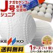 ナガセケンコー 軟式野球ボール J号 小学生向け ジュニア 検定球 1ダース売り 新公認球 J球 あすつく
