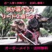 1回限定 人気のお試し犬用リード2個セット オーダーメイドで作成 小型犬 中型犬 子犬