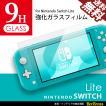 Nintendo SWITCH Lite 任天堂 スイッチライト 保護フィルム 9H 強化ガラスフィルム 保護シール 高硬度 0.3mm 送料無料