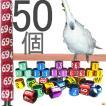 【大型インコsize】オーダーメイド足環50個【8.5mm〜12mm】