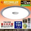LEDシーリングライト 高効率モデル 12畳 5000lm CL12N-FEIII アイリスオーヤマ