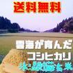 新米コシヒカリ 玄米20kg送料無料 令和元年産雲海が育んだ岡山びほく産