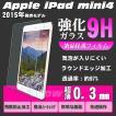 iPad mini/mini2(Retina)/mini3/mini4(2015モデル) 対応 強化ガラス 保護フィルム アイパッドミニ 液晶保護 硬度9H ラウンドエッジ 極薄 0.3mm DM便送料無料