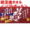 卒業記念品 部活魂 競技別タオル(ソフトボール)