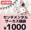 【メール便送料無料!1000円ポッキリ!】 センチメンタルサーカス 6点入り・1000円福袋(福箱)