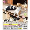 ふちやすみ 柴犬(5種) コンプリートセット