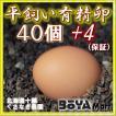 くさなぎ農園 平飼い有精卵 40個(割れ保証4個含み44個)【自家製国産飼料/安全】【送料込】
