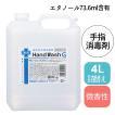 昭和化学 薬用 ハンドウォッシュG 4L 医薬部外品 (1Lアプリケーター付)
