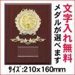 表彰楯B(中)/ATZ-8449B/210x160mm/種目のメダルが選べます/#19