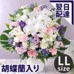 【お供え 花 お供えの花 お悔み 供花 仏花 ユリ】旬のおまかせアレンジLL
