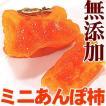 紀州自然菓 あんぽ柿個包装 3個入(ぷちサイズ)