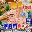 ご家庭用大盛 冷し梅うどん10食セット(麺、めんつゆ、梅干付)