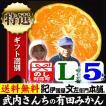 みかん 和歌山みかん 武内さんちの有田みかん(Lサイズ)約5kg 厳選果実 特選ギフト
