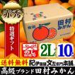田村みかん (特選)贈答用ギフト選別品 (2Lサイズ・10kg)1箱=約60果前後( LL ) 和歌山みかん有田みかんの最高ブランド果実