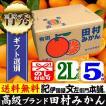 田村みかん 贈答用ギフト選別品 (2Lサイズ・5kg)1箱=約30果前後( LL )和歌山有田みかんの最高ブランド ギフト選別果実