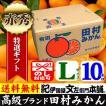 田村みかん (特選)贈答用ギフト選別品(Lサイズ・10kg)1箱=約80果前後 和歌山みかん有田みかんの最高ブランド果実