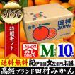 田村みかん (特選)贈答用ギフト選別品(Mサイズ・10kg)1箱=約100果前後 和歌山みかん有田みかんの最高ブランド果実