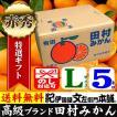 田村みかん (特選)贈答用ギフト選別品(Lサイズ・5kg)1箱=約40果前後 和歌山みかん有田みかんの最高ブランド果実