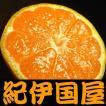 和歌山 有田みかん 上友農園・上野山さんちの有田ミカン  約3kg (Sサイズ 約36果前後) ご家庭用わけありB級