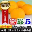 八朔/ハッサク (秀品)(5kg・サイズ混合)紀州有田産はっさく