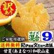 完熟甘夏(あまなつ)(買得品9kg)ご家庭用紀州和歌山県有田みかんの里から(お試しセット)