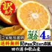 わけあり柑橘・完熟田の浦オレンジ(新甘夏・サンフルーツ)紀州和歌山県有田みかんの里から(買得品4.5kg)ご家庭用TVで話題の規格外果実(セール)