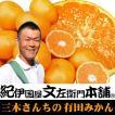紀州和歌山みかん産地直送 三木さんちの有田みかん 約5kg 特選ギフト品