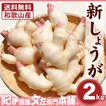 フレッシュ新しょうが2kg入和歌山県産   紀ノ川河口で栽培されている高品質の新生姜を新鮮 産地直送 自家製 甘酢漬け、紅ショウガ、生姜湯、砂糖漬けに