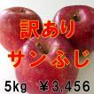 信州松川 果汁たっぷり りんごセット 訳ありサンふじ(R) 5kg