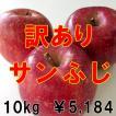 信州松川 果汁たっぷり りんごセット 訳ありサンふじ(R) 10kg