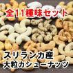 カシューナッツ おつまみ 手土産 全11種の味セット スリランカ産 大粒