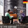 だまし絵 輸入壁紙 クロス 木目調 ドイツ製壁紙 紙製/Birkenrinde 白樺の樹皮 8-700