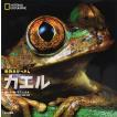 カエルの図鑑 動物大せっきん カエル ナショナルジオグラフィック