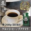 グアテマラ 200g(豆のまま) コーヒー豆 自家焙煎珈琲 商品番号15480