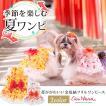 犬 服 犬服  春夏 金魚 フリル リボン ワンピース 犬の服 新作 きゃんナナ ドッグウェア ブランド