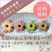 米粉のさくらマドレーヌ8個セット(バニラ・ココア・ほうじ茶・抹茶)【クリックポスト送料無料】