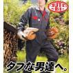 タフネスウェア オートバイ印長袖つなぎ 8300 S〜3L 【山田辰・AUTO-BI・長袖・ツナギ】