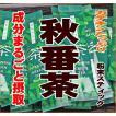カテキンたっぷり秋番茶 粉末スティック0.5g×30