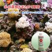 ストップ ヘアーアルジー 海水魚・サンゴ水槽用 250ml 関東当日便