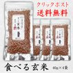 CP送料無料 食べる玄米(高級玄米茶用原料) 40g×4袋セット