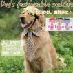 犬のネクタイ ストライプ 首輪型 大型犬 中型犬 ペット ワンサイズ フリーサイズ お出かけ お散歩に ペット小物 ゆうパケットで送料無料 ◇CHI-B0108
