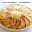 浜松餃子 80個 惣菜 知久屋 冷凍 贈り物 ギフト お取り寄せ ご当地 グルメ【ちくや浜松餃子 20個入り×4袋】