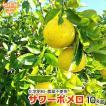サワーポメロ 10kg 化学肥料・除草...