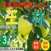 青森県津軽産りんご【王林】訳あり3Kg/箱【送料無料】