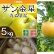 青森県津軽産りんご サン金星 優品・ご家庭用 5Kg/箱 送料無料