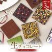 【選べる3種】ビーガン生チョコレート