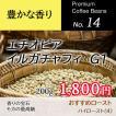 エチオピア イルガチャフィG1 ナチュラル 200g コーヒー豆 選べる焙煎 豆・粉が選べるコーヒー豆