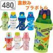 水筒 直飲み プラスチック ワンタッチボトル 480ml 子供 ノンキャラクター 軽量 ( 日本製 幼稚園 保育園 食洗機対応 キッズ )