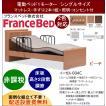 開梱設置料無料 フランスベッド 家庭用介護ベッド イーゼルシリーズ 004C 1モーター シングルサイズ フレーム+マットレスセット (非課税品)